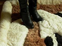 Alpaca Rug Trample: High Heel Stiletto Boots (Uggling) Tags: feet alpaca animal fur boot shoes highheel highheels boots platform dirty heels rug heel stiletto sole knee stilettos animalskin fmb furrug otk animalrug furryrug animalskinrug skinrug softrug alpacarug