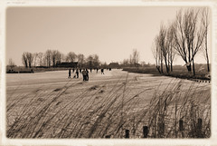 Winter is History (Hindrik S) Tags: old winter sky ice reed sepia landscape ride sony skating nederland nostalgia skate nostalgic ie