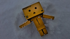 danbo angel (*(Ian)* - Ian Howard) Tags: snow angel toy toys snowangel adventure hdr danbo danboard