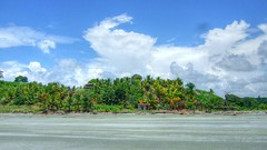 near Rio Verde, Esmeraldas (Ecuador Megadiverso) Tags: naturaleza southamerica nature ecuador day cloudy natur equateur equador quateur sdamerika neotropical neotropics