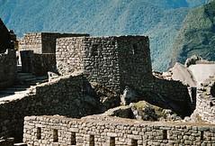 Machu Picchu 1 - 22