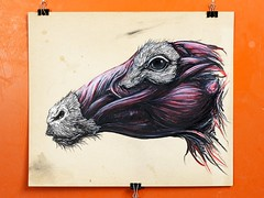 "ROA ""Fragments"" - The Scarlett Gallery"