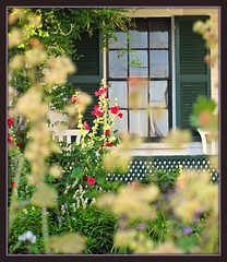 La Finestra (1-2-3 Scatto) Tags: flowers garden country maine shutters lattice rockland thewindow lafinestra