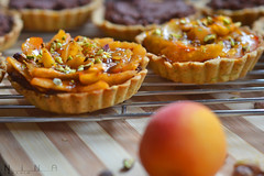 Apricot Tart made it myself =P..+ 1 (Nina Ibrahim) Tags: food nikon desert apricot tart نيكون اكل حلويات تارت مشمش شمواه d3100 دي3100