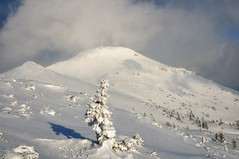 Monte Nevoso- Sneznik (1796m) (Orso Grisbi) Tags: winter slovenia neve karst carso sneznik montenevoso