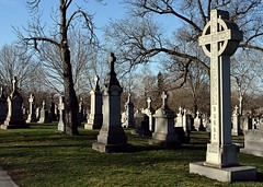 Burke (seanbirm) Tags: irish chicago green illinois stpatricksday cookcounty march17 mountolivetcemetery mtolivetcemetery irishcatholic mountgreenwood