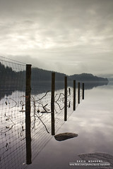 Debris (DMeadows) Tags: wild lake reflection water clouds rural fence scotland countryside wire stones tide horizon debris country reflect level fencing loch wilderness posts trossachs ard aberfoyle kinlochard davidmeadows dmeadows davidameadows dameadows yahoo:yourpictures=waterv2 yahoo:yourpictures=yourbestphotoof2012 yahoo:yourpictures=reflectionsv2