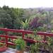 B&B balcony