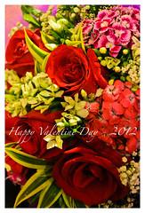 Happy Valentine Day (Wang Guowen (gw.wang)) Tags: woman flower love rose cards nikon women singapore day postcard valentine celebration card d7000 18105mmvr blinkagain gwwang wwwon9cloudcom