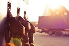 Die drei von der Tankstelle (180Pixel) Tags: 35mm tankstelle badoeynhausen eos400d