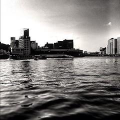 知らず知らず 歩いて来た 細く長いこの道 振り返れば 遥か遠く 故郷が見える でこぼこ道や 曲がりくねった道 地図さえない それもまた 人生 ああ 川の流れのように ゆるやかに いくつも時代は過ぎて ああ 川の流れのように とめどなく 空が黄昏に染まるだけ 『川の流れのように』美空ひばり #ig歌謡show #東京散歩 #tokyo #隅田川 #iphone4 #instagram #b&w この写真で2000枚目になりました。これからもまたよろしくお願いします。