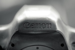 20120312_01_CANON EOS 5D MARK III (Magnesium Body Shell) (foxfoto_archives) Tags: macro canon eos is mark iii ii 5d usm f28l ef100mm 5d3