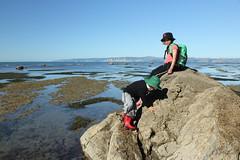 IMG_4542 (Mary Caughley) Tags: beach gisborne kaiti 2012 rockpools