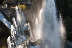 In the water I (milco60) Tags: italien italy water tivoli nikon italia fountains villadeste d90 panoramafotográfico mygearandme rememberthatmomentlevel1