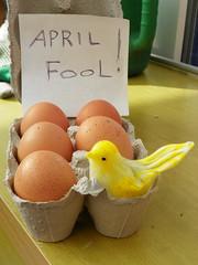 April fool... (Martha-Ann48) Tags: brown yellow writing 1st box joke chick note cardboard eggs april miscellany aprilfool
