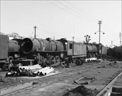 YG 1543 The End (RhinopeteT) Tags: india steam railways locomotives