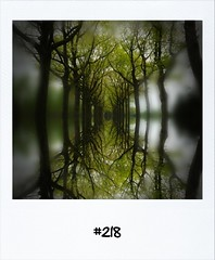 """#DailyPolaroid of 3-5-12 #218 • <a style=""""font-size:0.8em;"""" href=""""http://www.flickr.com/photos/47939785@N05/7147918013/"""" target=""""_blank"""">View on Flickr</a>"""