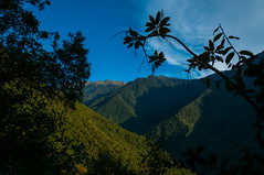 Vall yunga (faltimiras) Tags: trek real la track camino llama paz bolivia cami cordillera altiplano choro cumbre yolosa yunga altipla