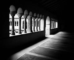 Clotre de l'glise Saint-Pierre le Jeune (eraggi) Tags: blackandwhite bw architecture blackwhite noiretblanc pb nb strasbourg alsace glise pretoebranco noirblanc clotre saintpierrelejeune