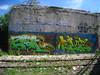 EVOKE & ELOTES (Billy Danze.) Tags: chicago graffiti d30 fym evoke elotes wyse nsh edsk