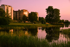 Evening light (Maria Eklind) Tags: pink light sky reflection building se skne pond sweden outdoor himmel serene sverige malm sunreflection ljus ribban ribersborg spegling skneln resundsparken fotosondag fs160522 limhamsvgen