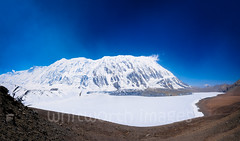 Frozen Tilicho Lake (whitworth images) Tags: blue nepal panorama white mountain lake snow cold ice nature trekking trek landscape outdoors frozen amazing asia scenic nobody nopeople panoramic snowcapped barren annapurna himalayas highaltitude acap manang greatbarrier tilicho indiansubcontinent tilichotal tilichopeak tilicholake annapurnaconservationarea lagrandebarriere
