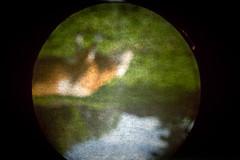 Camera obscura (Daniel Nilsson, Agunnaryd) Tags: cameraobscura fotosondag fs160605