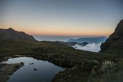 Solo una vida (miguel vanegas) Tags: agua vida nubes monte tarde paramo tiempo planeta altamontaa