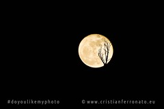 luna piena (Cristian Ferronato) Tags: doyoulikemyphoto luna moon paura terrore buio notte night