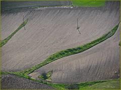 Piano Grande, Umbria-Marche, Italia (aNNa schramm) Tags: landscape italia outdoor linie natur felder landschaft acker kurve linien textur umbriamarche