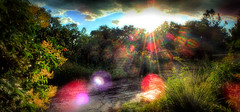 The beauty of rainbows (flowerweaver) Tags: sunset sun rain clouds landscape colorful rays rainbows sunrays raining prismatic lensflares awardtree