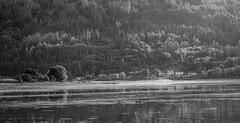 Houses at Kilmun - June 2016 (GOR44Photographic@Gmail.com) Tags: trees bw white house black reflection water ir mono holy fujifilm loch argyle tamron bute argyleandbute kilmun xpro1 tamron3570mmf35 gor44 3570mmf35fd