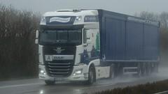 D - Erzgebirgsliner DAF XF 106 SSC (BonsaiTruck) Tags: truck 106 lorry camion trucks lastwagen daf lorries lkw xf lastzug erzgebirgsliner