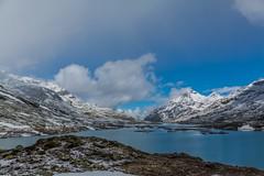 Lago Bianco (landeinwohner) Tags: mountains landscape schweiz switzerland see berge landschaft graubnden