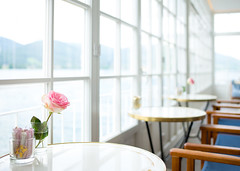 Details (Chris Buhr) Tags: leica chris 35mm licht interior details blumen mp rosen sonne summilux aran tegernsee wintergarten buhr