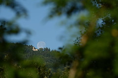 FEM_7642m (MILESI FEDERICO) Tags: summer italy moon detail sunrise landscape nikon europa europe italia estate alba details luna piemonte dettagli piedmont luce paesaggio valsusa dettaglio 2016 nital valdisusa milesi valledisusa d7100 visitpiedmont lunagrande valliolimpiche nikond7100 milesifederico