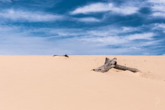 Carlo Sandblow (dualiti.net) Tags: wallpaper sky beach nature beautiful clouds canon outside photography sand natural background country australia explore download 6d
