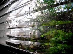 Pingos de chuva (KariinaAlmeida) Tags: chuva janela pingos chuvisco