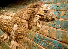Striding Lion (Erik Lykins) Tags: chicago brick museum illinois iraq lion exhibit indoors hydepark universityofchicago babylon orientalinstitute ishtar babylonian striding processionalway d7000