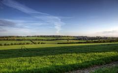 A Hampshire Landscape
