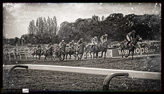 Jubilee Day at the Races (Billy-Fish) Tags: england horses blackandwhite texture monochrome sussex blackwhite track jubilee racing textures chase races equine textured fontwell billyfish