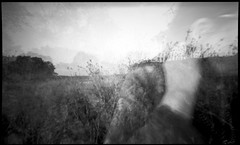 then i shall turn my face, (a perhaps hand) Tags: northerncalifornia blackwhite tmax multipleexposure marincounty plasticcamera expiredfilm homedeveloped novatoca kodakhc110 wideanglepinhole thehuman artlibre autaut artlibres holga120wpc obscurabook