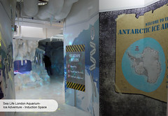 London Aquarium Ice Adventure entrance (ravenhill design) Tags: design immersive interactive bas londonaquarium happycampers spidercrab ravenhill researchstation gentoopenguins britishantarcticsurvey iceadventure crawlthrough ravenhilldesign