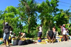 mango time (luca.gargano) Tags: travel haiti caribbean gargano lucagargano ayti