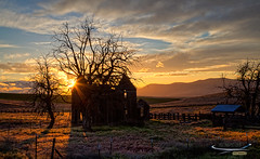 Sunset in the desert. (Ismael Barrera - DIGISNAPSTUDIO) Tags: trees sunset urban orange usa sun house nature grass clouds oregon canon landscape ruins warm shadows farm branches country hills abandon fields fenced wasco biggs goldenhour sunflare markii ismaelbarrera digisnapstudio