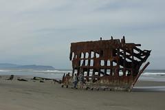 Peter Iredale, 1909 (blackthorne56) Tags: wood shells beach sand sandy peter driftwood beaches drift iredale shepwreck