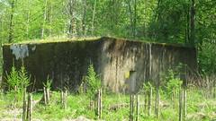 2012-050439 (bubbahop) Tags: ruins thirdreich nazis wwii poland worldwarii wolfs hitlers worldwar2 2012 lair hqs bunkers okh ketrzyn wolfsschanze mamerki kętrzyn mauerwald europetrip25