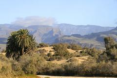 Nuestro espectacular paisaje de Charca ,dunas y Cumbre
