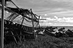 LAS BARCAS QUE HABLAN SUS HISTORIAS - BOATS THAT SPEAK THEIR STORIES (alfonsomejiacampos. PLEASE READ MY PROFILE) Tags: yolanta barcas botes historias orilla mar esfuerzo sudor islademargarita venezuela