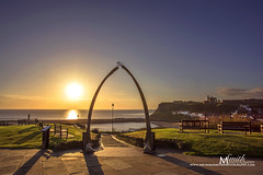 Whitby Wishbone sunrise #Explored No.16 (1 July 2016) (MichikoSmith) Tags: uk morning blue sea summer england sky orange cliff sun sunshine clouds sunrise bench harbor pier town seaside purple harbour yorkshire north whitby whale bone wishbone